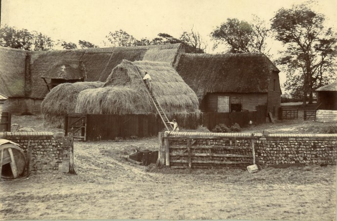 Reach Court Farm c.1880